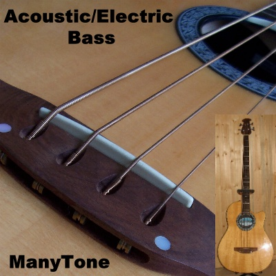 Manytone Acoustic Electric Bass